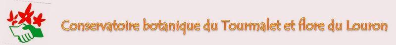 Conservatoire_botanique_du_Tourmalet_et_flore_du_Louron